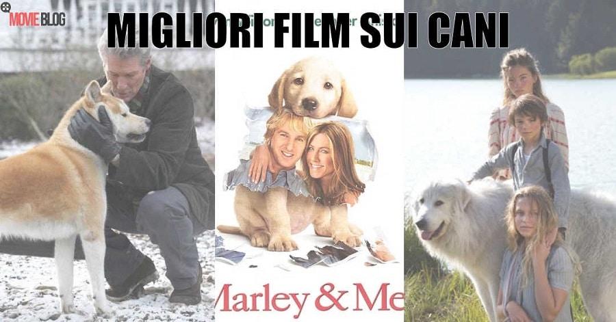 I Migliori Film sui Cani da vedere almeno una volta